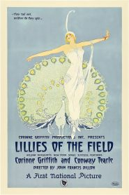 Lilies of the Field