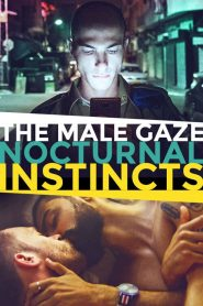 The Male Gaze: Nocturnal Instincts